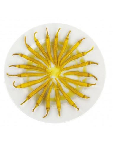 Avab EVOO Blanqueta Hand Blown Glass Jar 500ml
